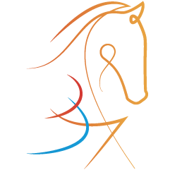 Hollander Horses